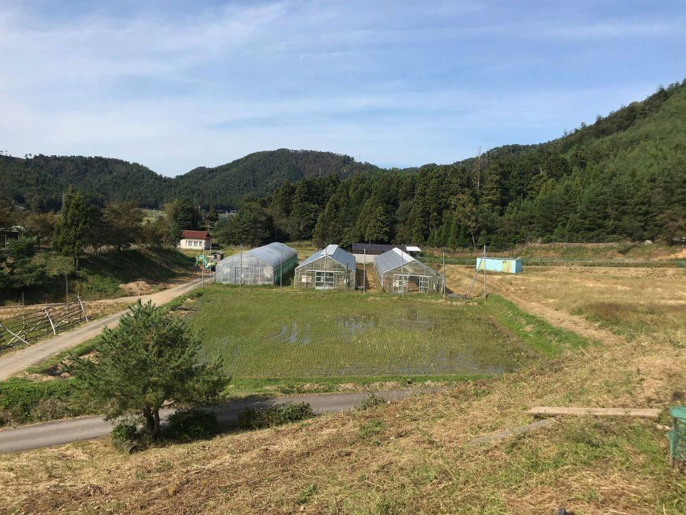 mumokuteki cafeのお米の農家さん紹介!福井県かみなか農楽舎に行って来ました!